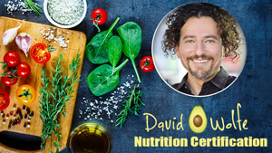 David-Wolfe-Nutrition-Certification-Career-Path-Online-Business-Online-Learning-Online-Holistic-Nutrition-Certification